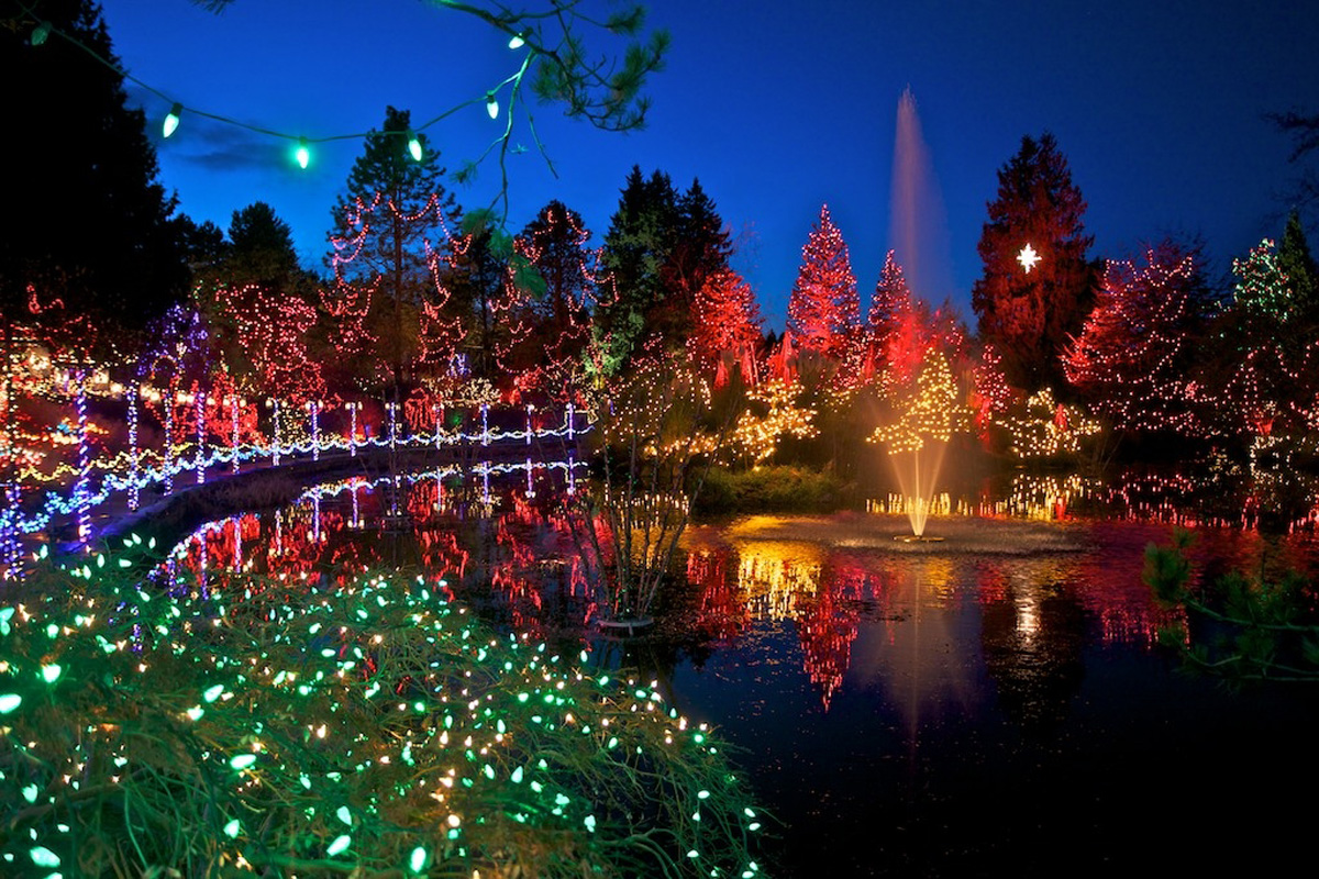 Lights camera and selfie vandusen botanical garden reflects the times with its festival of for Botanical garden christmas lights