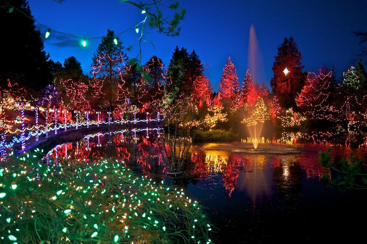 Lights camera and selfie vandusen botanical garden - Garden of lights botanical gardens ...
