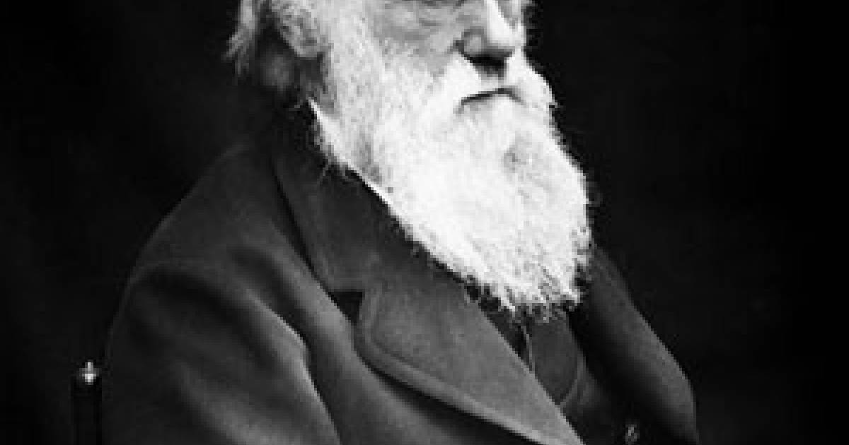 Documented proof of Darwin's natural selection | Georgia Straight