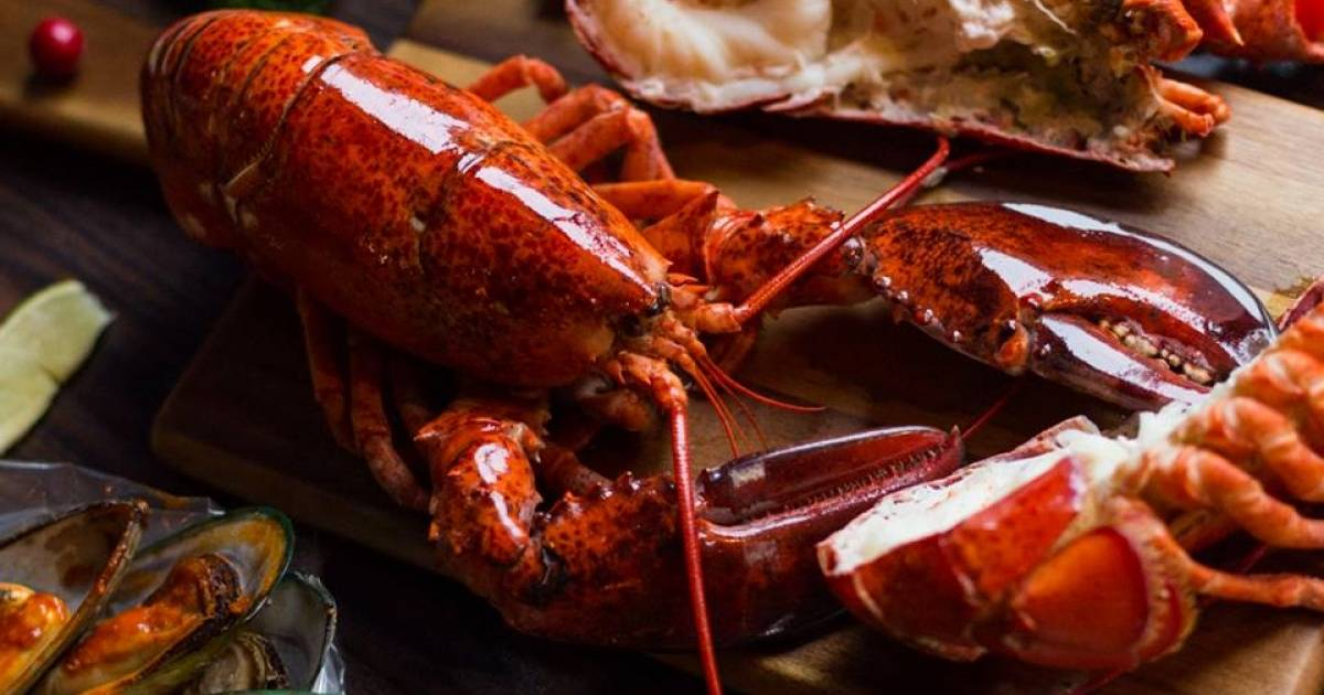 captains boil continues lower mainland expansion with
