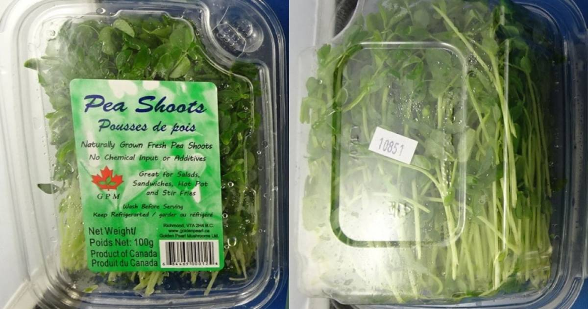 Pea shoots recalled in B.C. and Alberta due to possible Listeria contamination