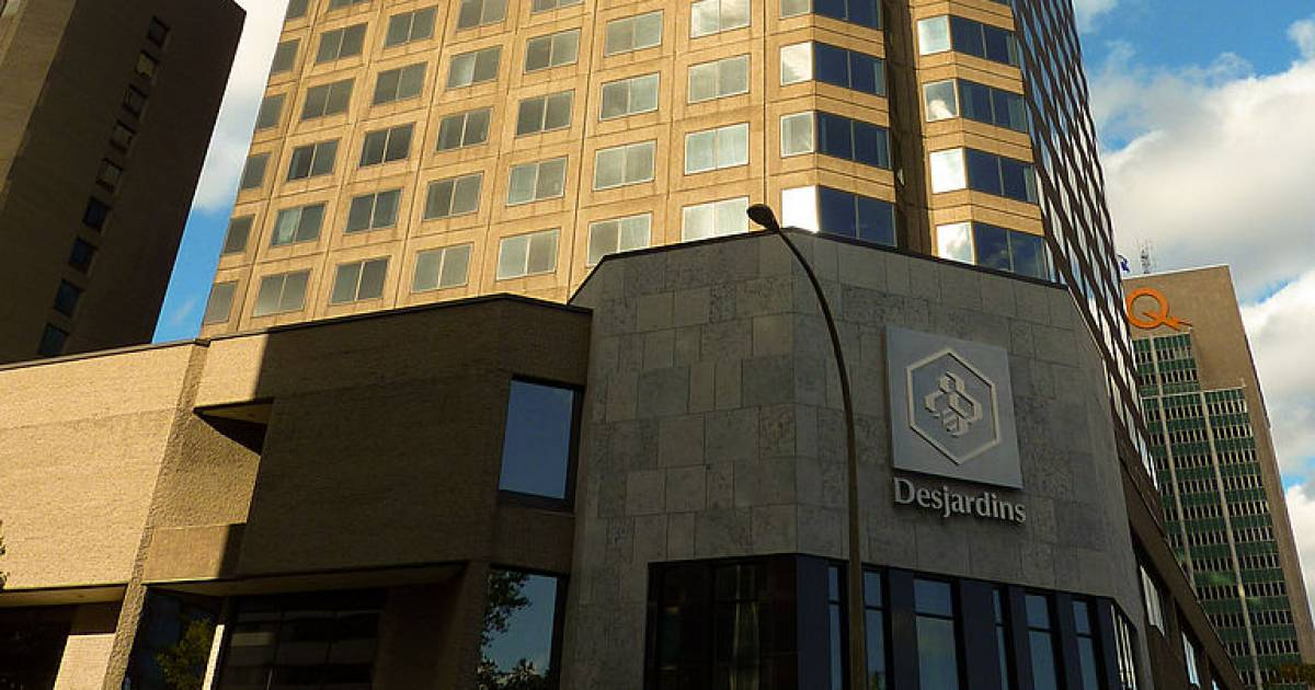Massive Desjardins Group data breach caused by employee who's since been fired