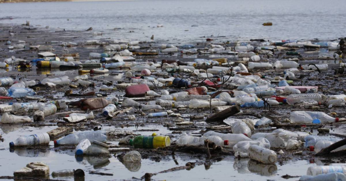 David Suzuki: Fossil-fuelled plastic production imperils people and planet
