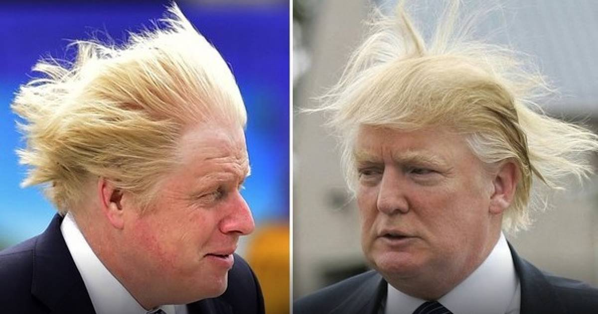Dumb and Dumber? Fur flies on Twitter after Boris Johnson becomes