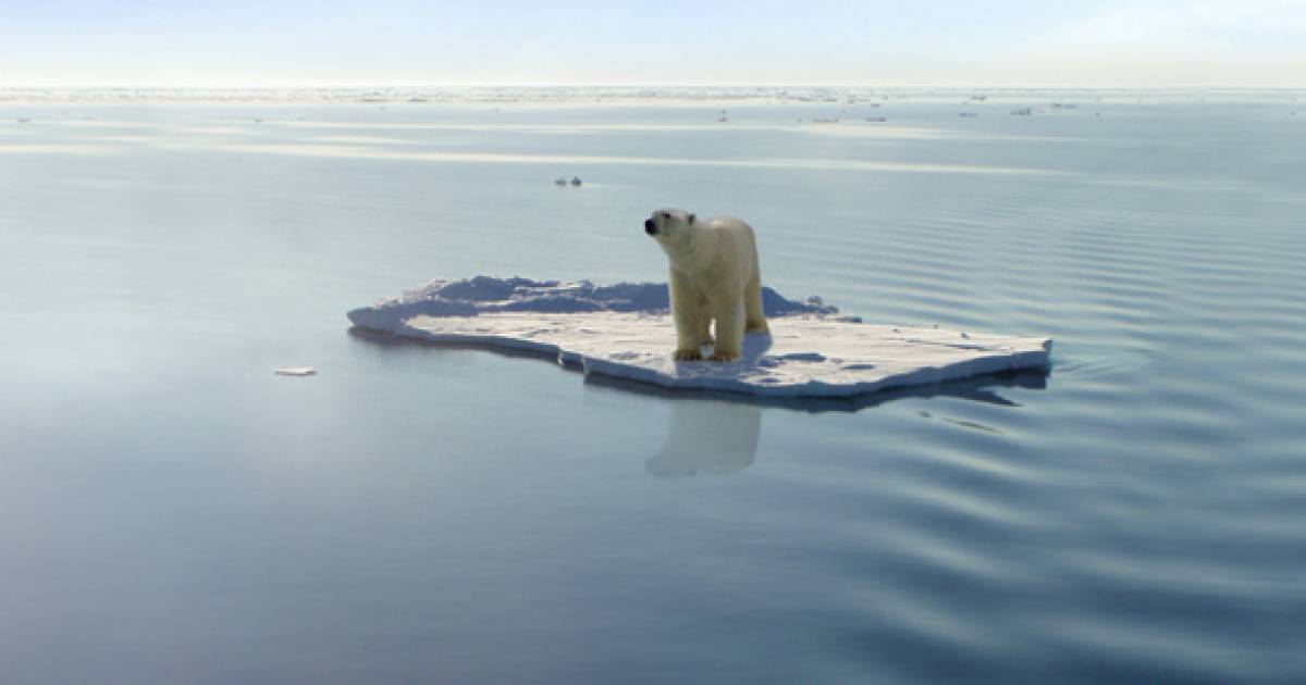 David Suzuki: Connecting the dots between the climate and biodiversity crises