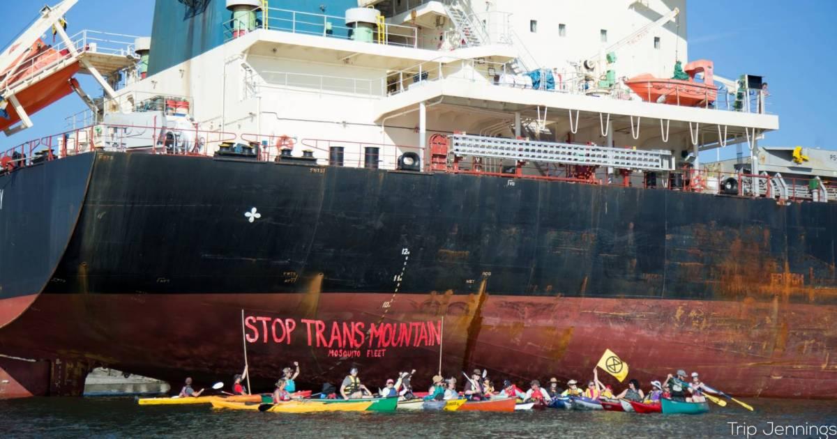 Trans Mountain protesters target Washington port with kayak flotilla