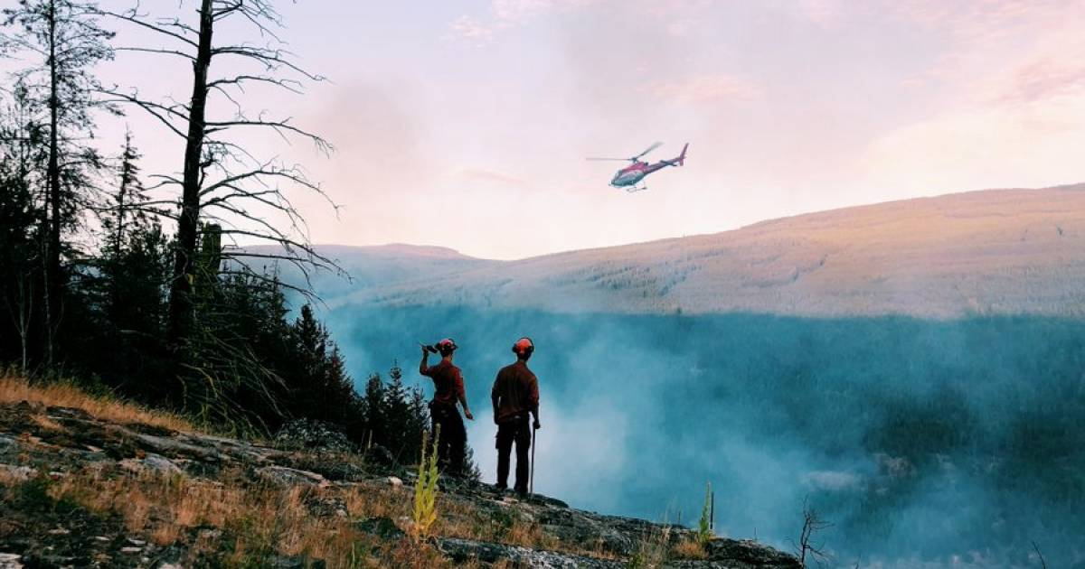 Eric Denhoff: Saving B.C.'s forestry towns—a Marshall Plan for the Interior of the province