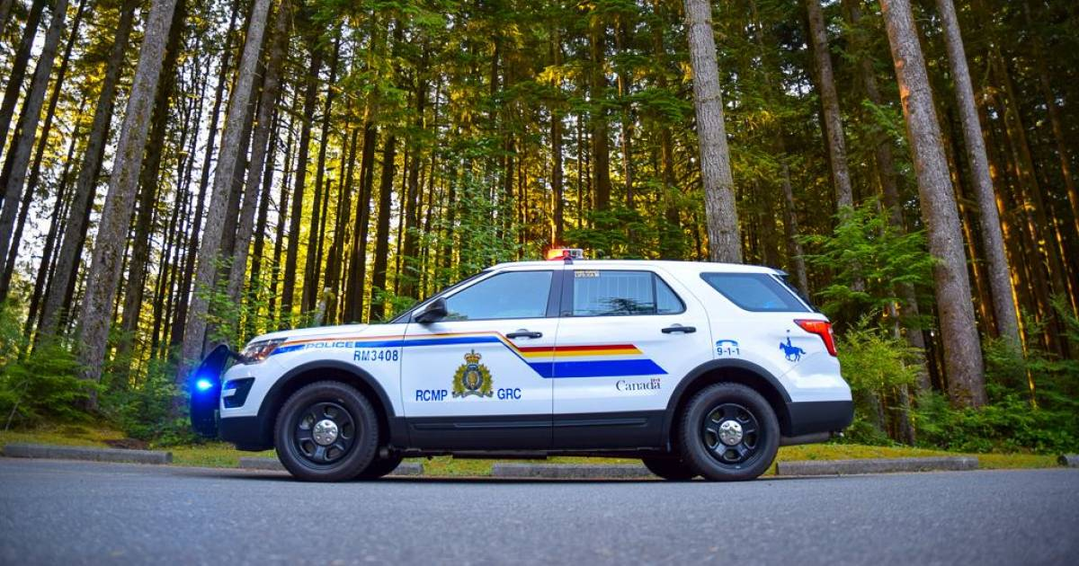 Man arrested after bizarre incident involving jumping atop a vehicle in Maple Ridge