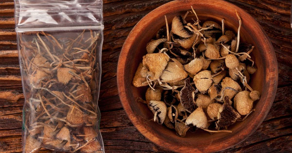 Can you cook magic mushrooms? | Georgia Straight Vancouver's News &  Entertainment Weekly