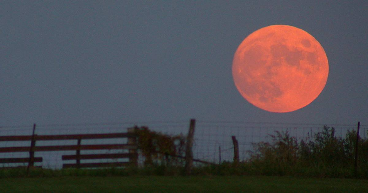 Beaver moon eclipsed by Earth's shadow tonight