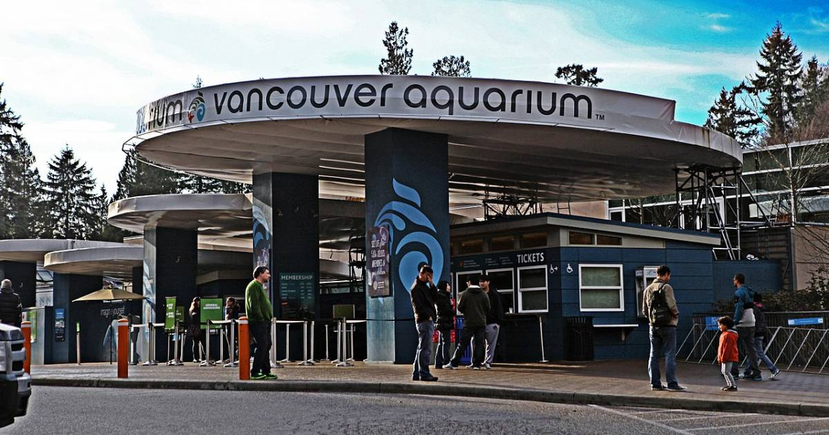Vancouver Aquarium sold to American company that owns Dollywood, Harlem Globetrotters