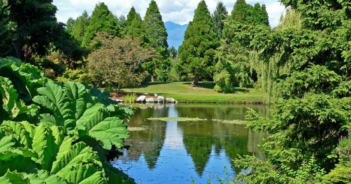 Park board's VanDusen Botanical Garden, Sunset Nursery to donate season's vegetable crops to vulnerable residents