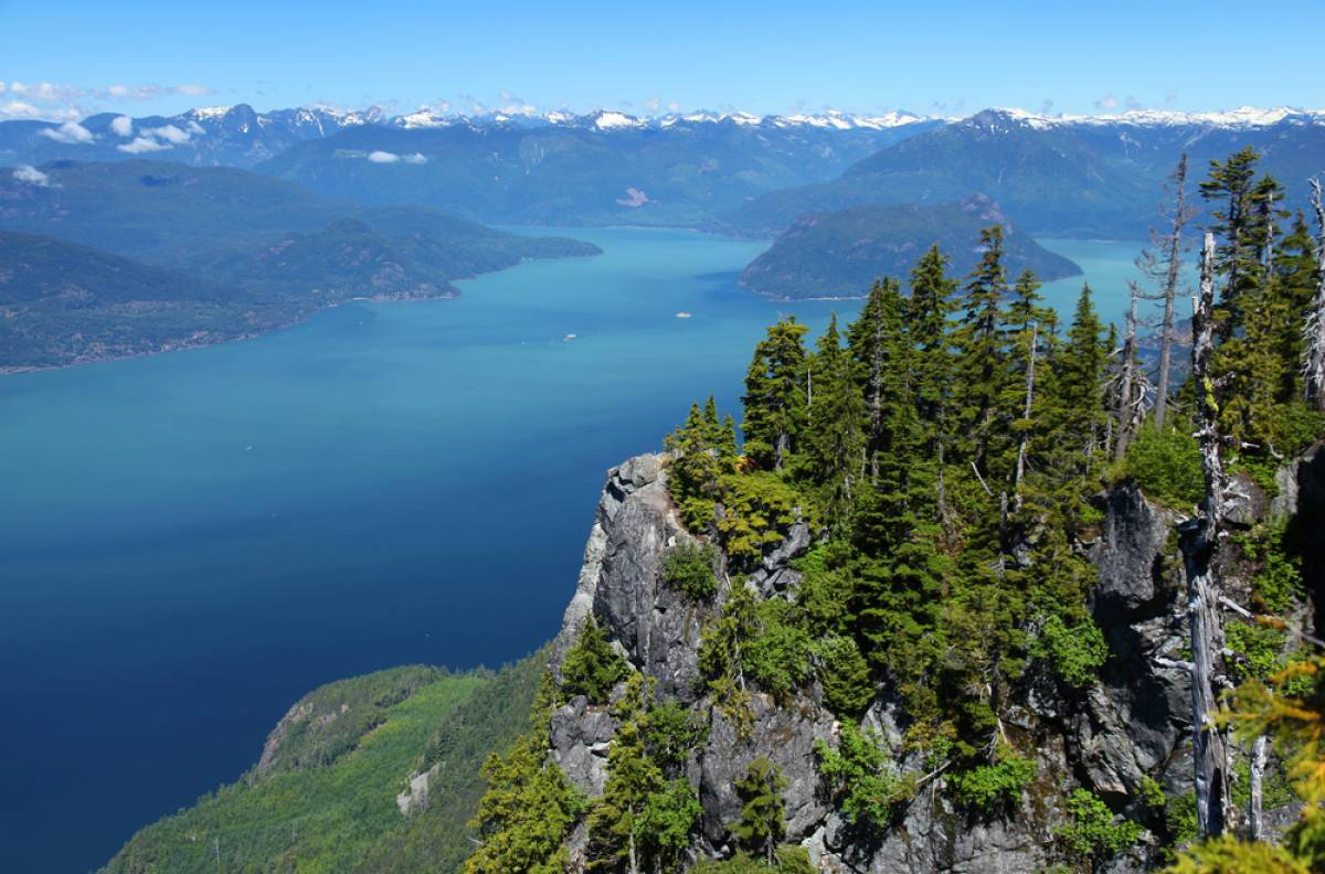 The Howe Sound, a deep fjord extending from West Vancouver to Squamish, is home to rare glass sponge reefs.