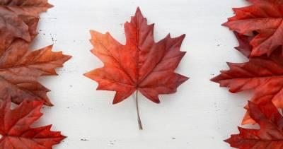 495e7071b67 Canada 150  Canada Day 2017